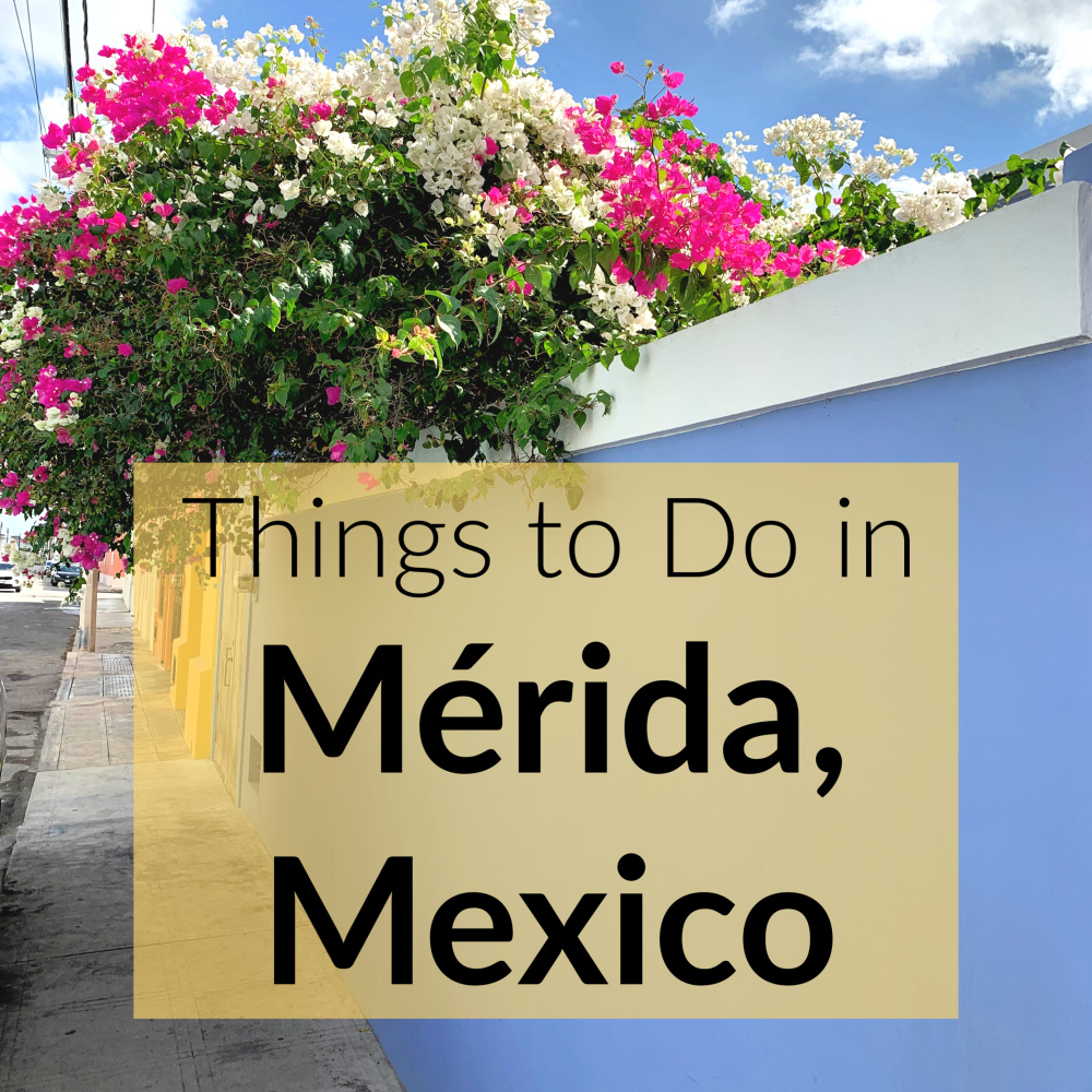 Things to do in Merida Square