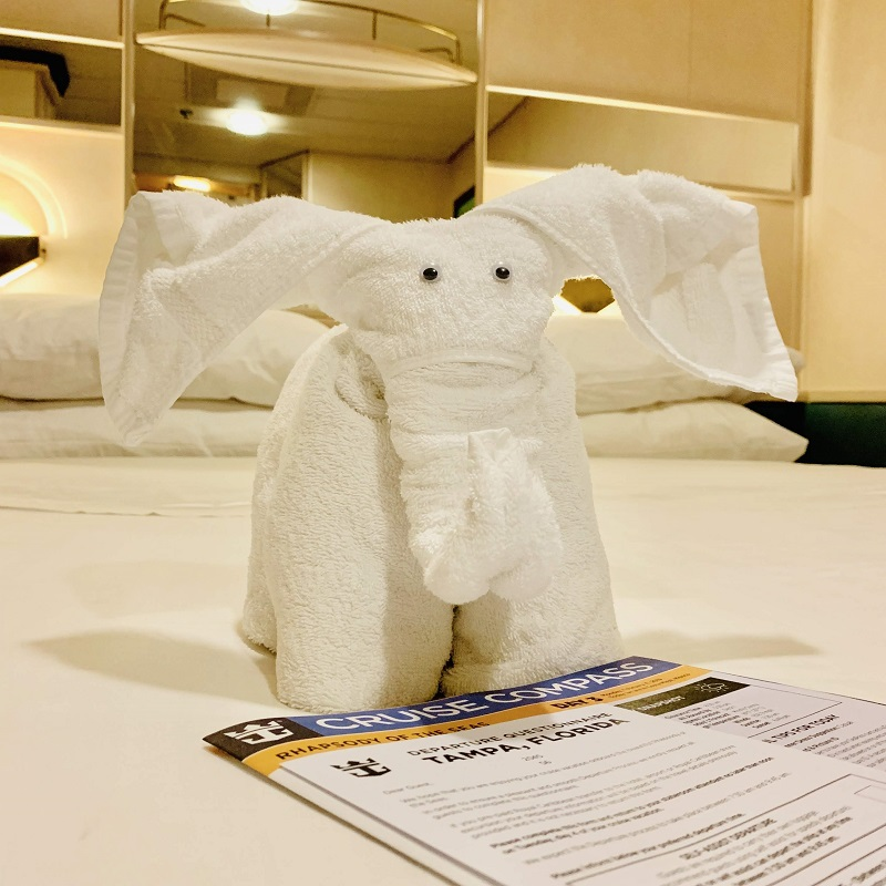 First Time Cruise Tips towel animal